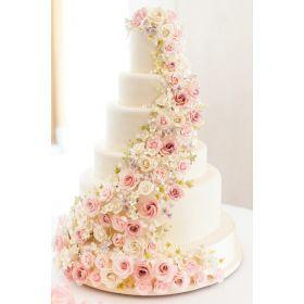 Tier Roses Cake 10kg