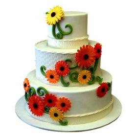 cake 6 kg