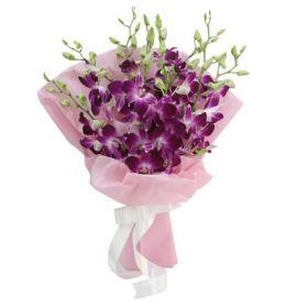 Sparkle Purple