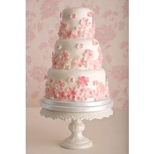 Pink Shower Cake 8 kg